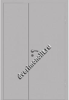 Входная металлическая дверь - 2Д-009