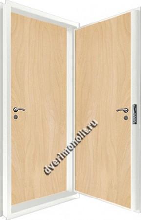 Входная металлическая двойная дверь 12-066
