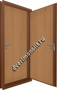 Входная металлическая двойная дверь 12-068