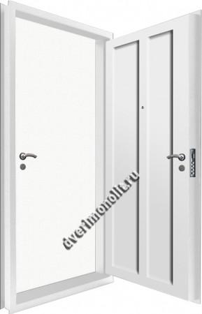 Входная металлическая двойная дверь 12-113