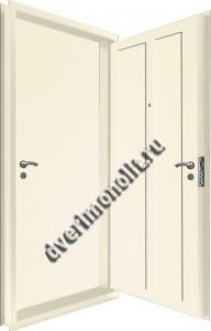 Входная металлическая двойная дверь 12-119