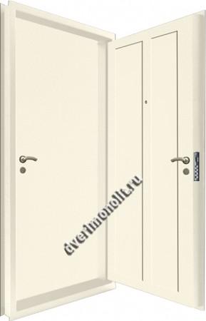 Входная металлическая двойная дверь 12-121