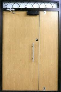 Входная металлическая дверь - 81-09