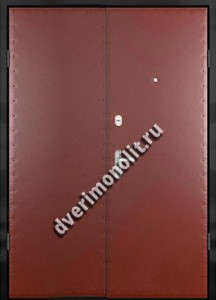 Входная металлическая дверь - 81-65