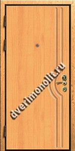 Входная металлическая дверь. Модель 245-01