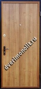 Входная металлическая дверь - 597-07