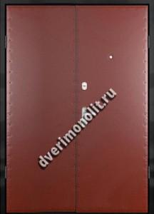 Нестандартная металлическая дверь. Модель 003-006