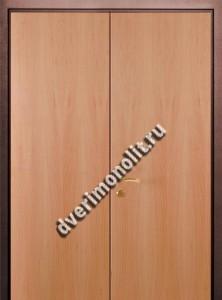 Нестандартная металлическая дверь. Модель 003-007