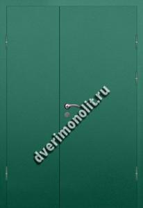 Входная тамбурная дверь на площадку на этаже - 009-011