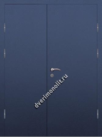 Входная тамбурная дверь на площадку на этаже - 009-012