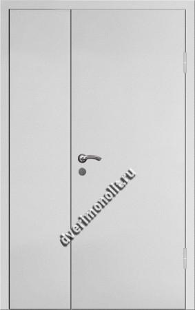 Входная тамбурная дверь на площадку на этаже - 009-007