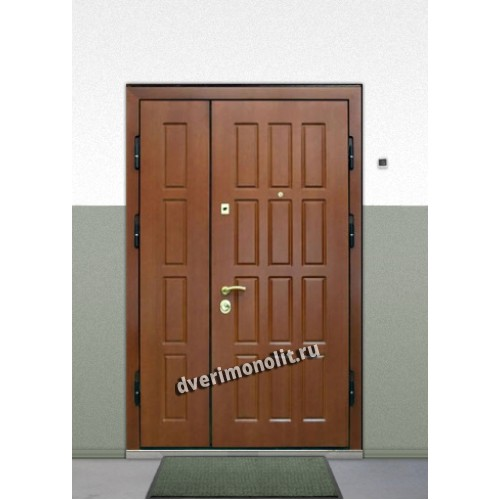 двери входные для школы